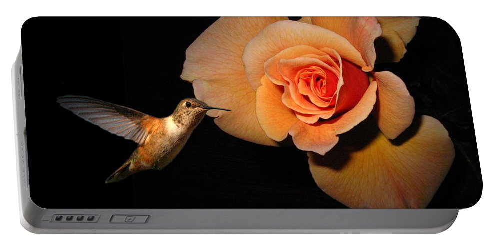 Bird Portable Battery Charger featuring the photograph Hummingbird And Orange Rose by Joyce Dickens