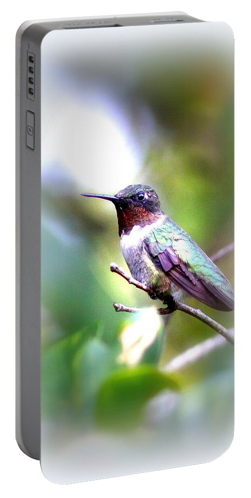 Bird Portable Battery Charger featuring the photograph Hummingbird - Beautiful by Travis Truelove