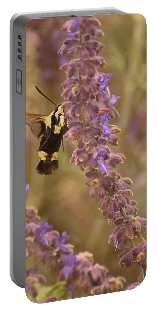 Hummingbird Moth Portable Battery Charger featuring the photograph Hummingbird Moth On Russian Sage by Mel Hensley