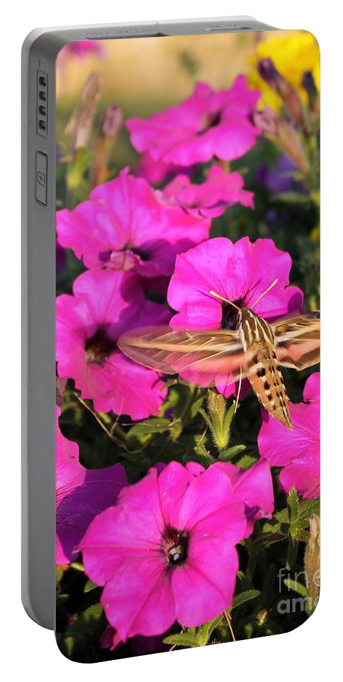 Portable Battery Charger featuring the photograph Hummingbird Moth by Renee Croushore