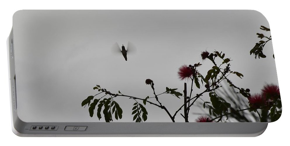 Linda Brody Portable Battery Charger featuring the photograph Hummingbird Silhouette I by Linda Brody