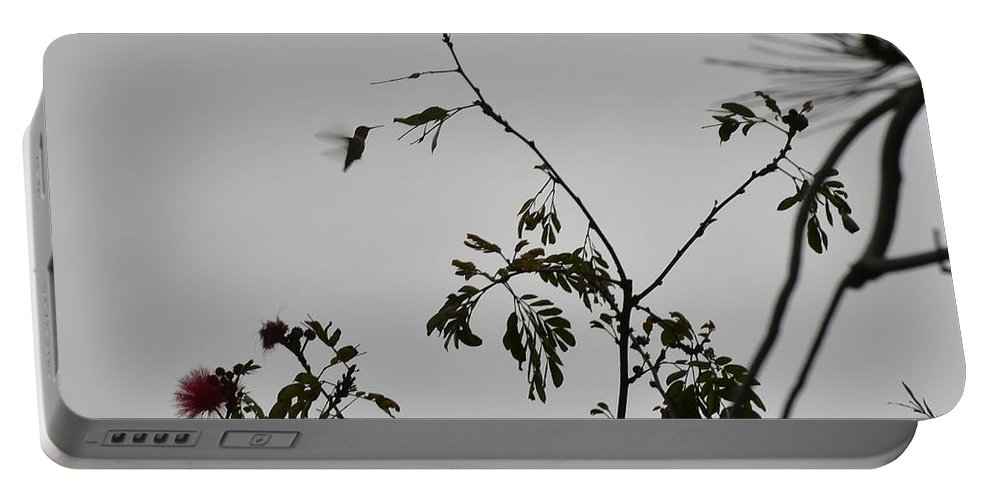 Linda Brody Portable Battery Charger featuring the photograph Hummingbird Silhouette II by Linda Brody
