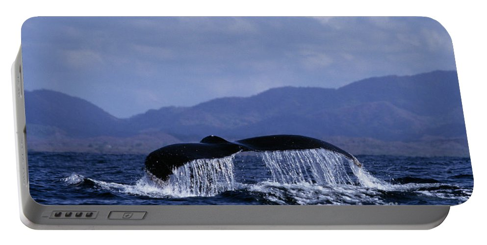 Nature Portable Battery Charger featuring the photograph Hump Backed Whale Tail With Cascading Water by John Harmon