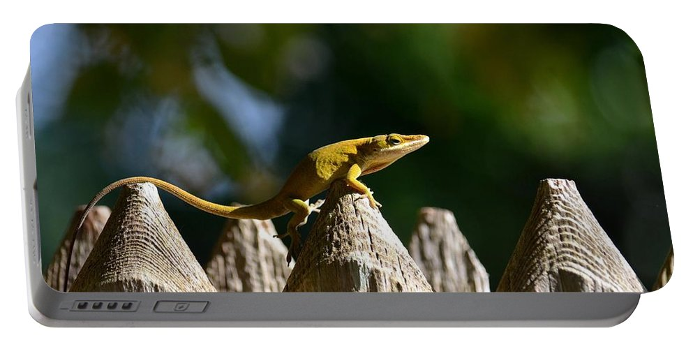 Hump Day Portable Battery Charger featuring the photograph Hump Day by Maria Urso