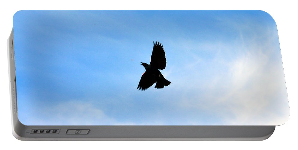 Black Bird Portable Battery Charger featuring the photograph Hungry Bird by Brent Dolliver
