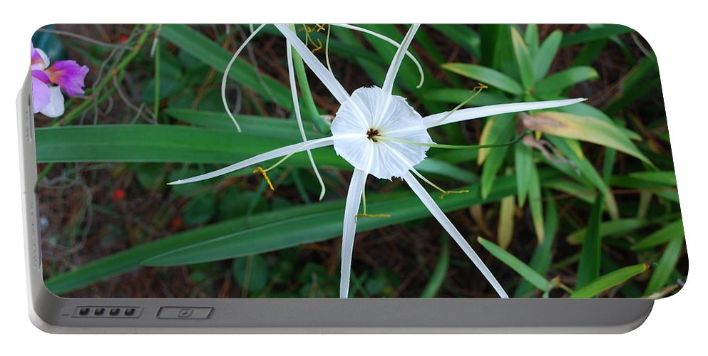 Hurricane Lilly Portable Battery Charger featuring the photograph Hurricane Lilly by Robert Floyd