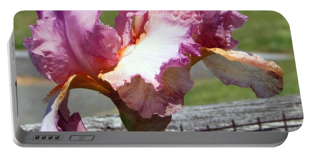 Pink Portable Battery Charger featuring the photograph I Am Soft And Pink by Debi Singer