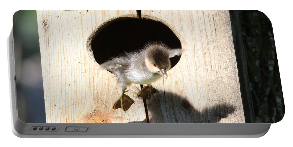 Wood Duck Portable Battery Charger featuring the photograph I Can Fly by Lori Tordsen