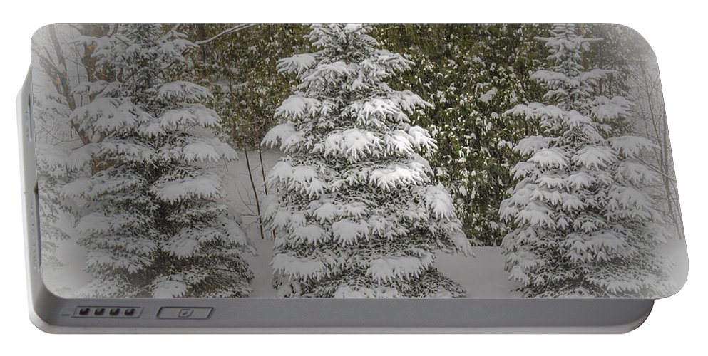 Trees Portable Battery Charger featuring the photograph I Dream Of Trees by LeeAnn McLaneGoetz McLaneGoetzStudioLLCcom