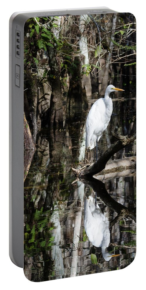 Florida Portable Battery Charger featuring the photograph I Feel Pretty by Georgette Grossman