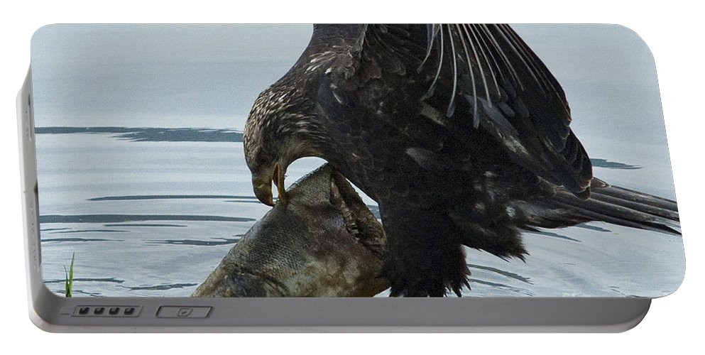 Eagle Portable Battery Charger featuring the photograph I Got It.... by Rod Wiens