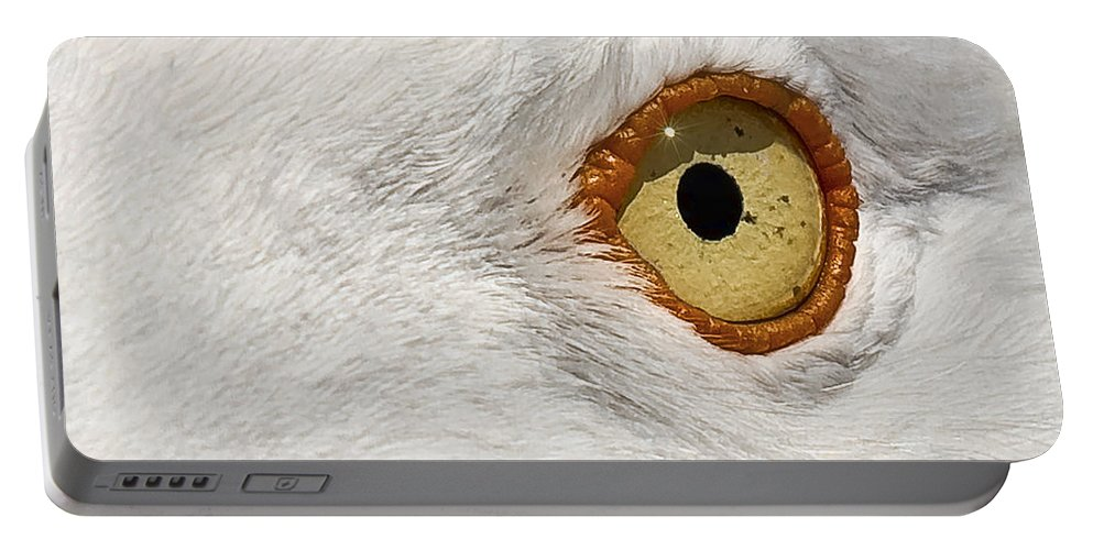 Animal Portable Battery Charger featuring the photograph I Have My Eye On You by Marcia Colelli