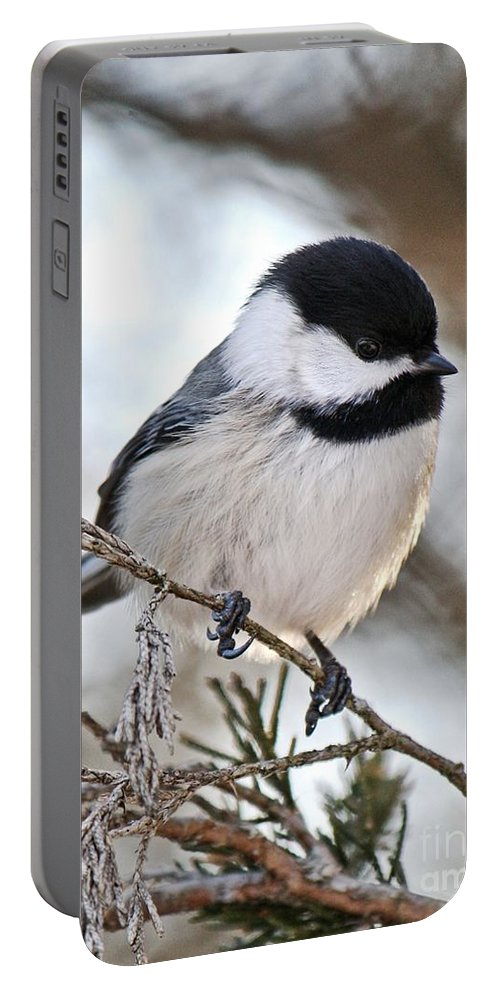 Nature Portable Battery Charger featuring the photograph I May Be Tiny But You Should See Me Fly by Heather King