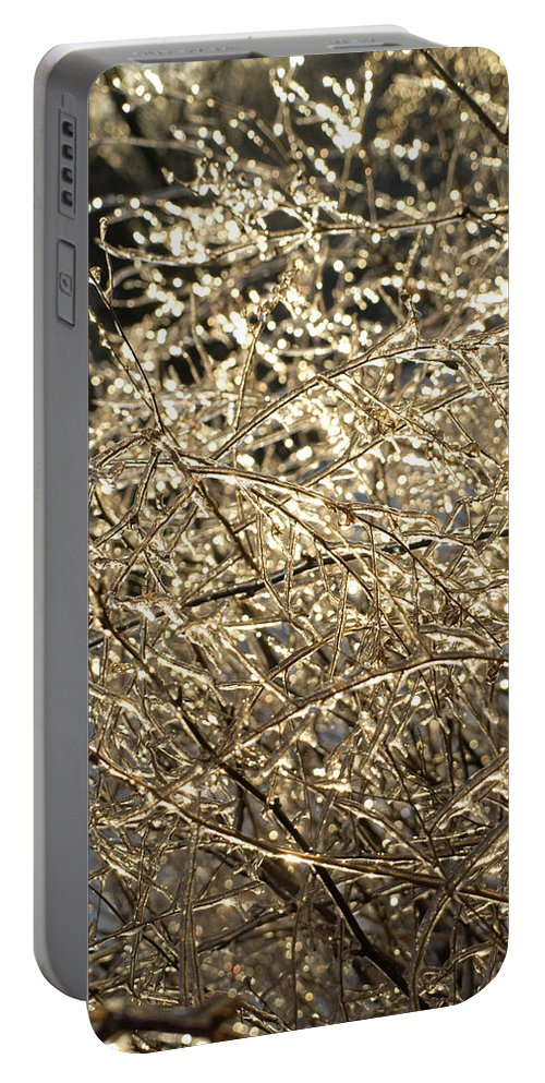 Burst Portable Battery Charger featuring the photograph Ice Burst by Shannon Workman