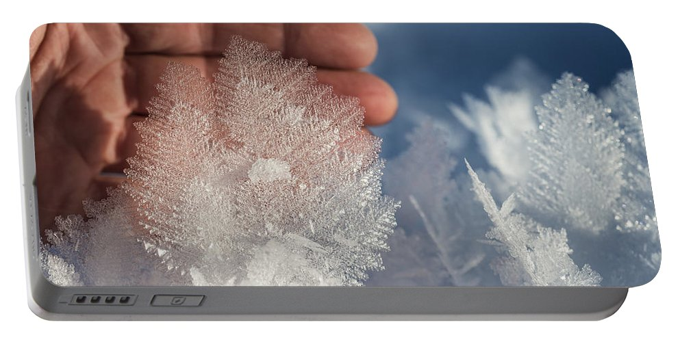 Ice Portable Battery Charger featuring the photograph Ice Feathers by Ted Raynor