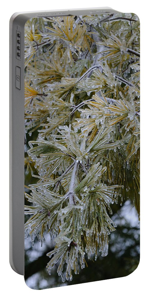 Landscape Portable Battery Charger featuring the photograph Ice Needles by Scott Angus