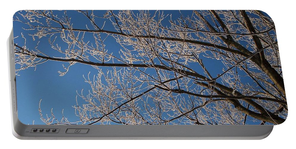 Branches Portable Battery Charger featuring the photograph Ice Storm Branches by Michelle Miron-Rebbe