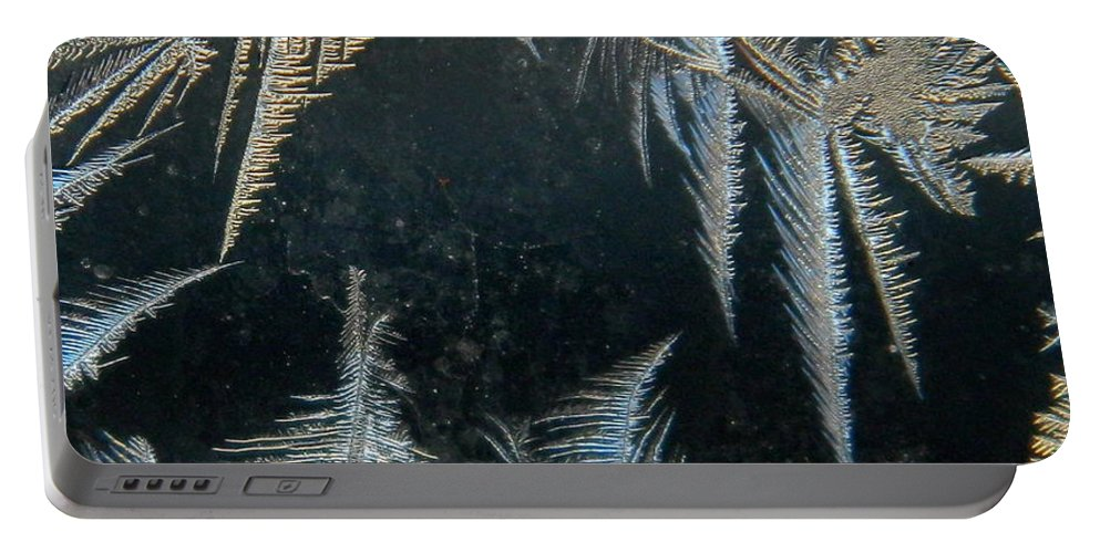Ice Feathers Portable Battery Charger featuring the photograph Ice Wings by Kathy Barney