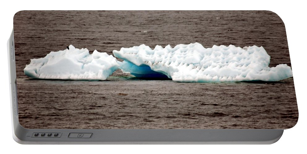 Alaska Portable Battery Charger featuring the photograph Iceburg With Passenger by Glenn Aker