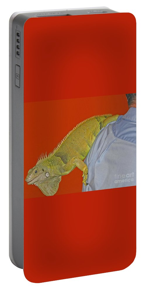 Iguana Portable Battery Charger featuring the photograph Iguana By The Tail by Ann Horn
