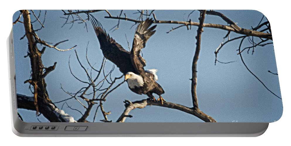 Colorado Portable Battery Charger featuring the photograph Im Outa Here by Bob Hislop