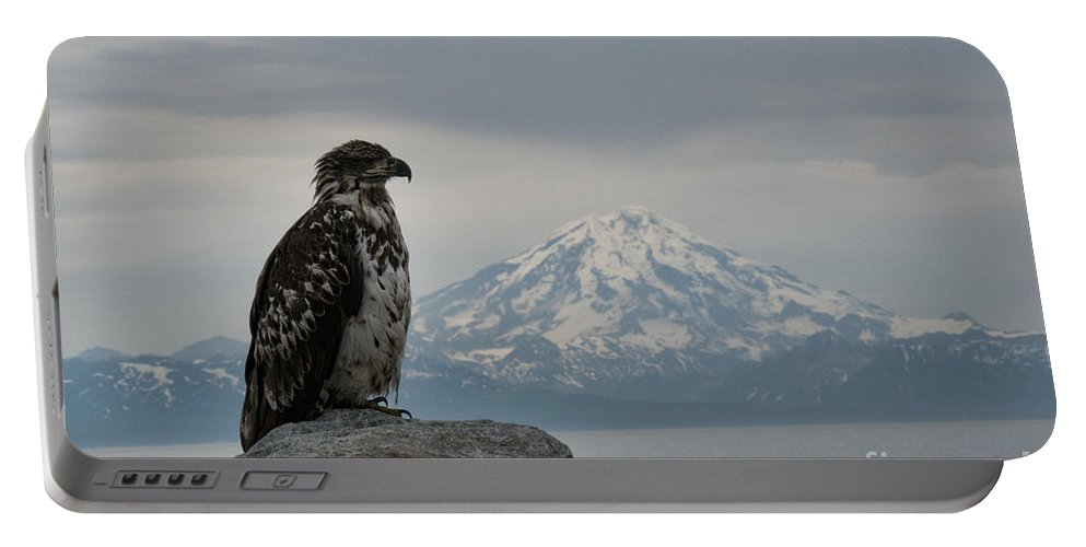 Alaska Portable Battery Charger featuring the photograph Immature Eagle And Alaskan Mountain by David Arment