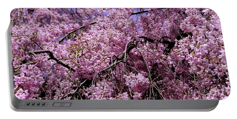 Tree Portable Battery Charger featuring the photograph In Bunches by Joe Geraci