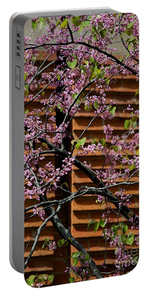 Blooming Portable Battery Charger featuring the photograph In Contrast by Joseph Yarbrough