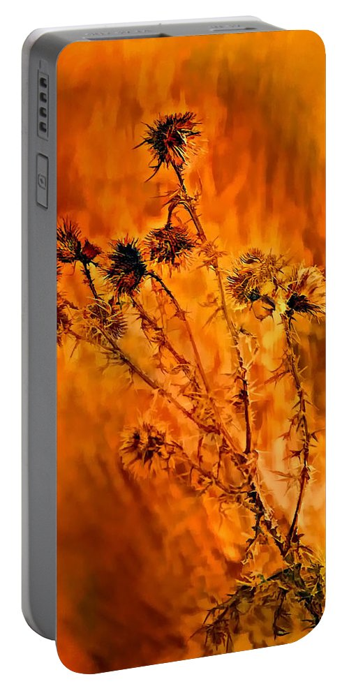 Weed Portable Battery Charger featuring the photograph In Praise Of Weeds by Steve Harrington
