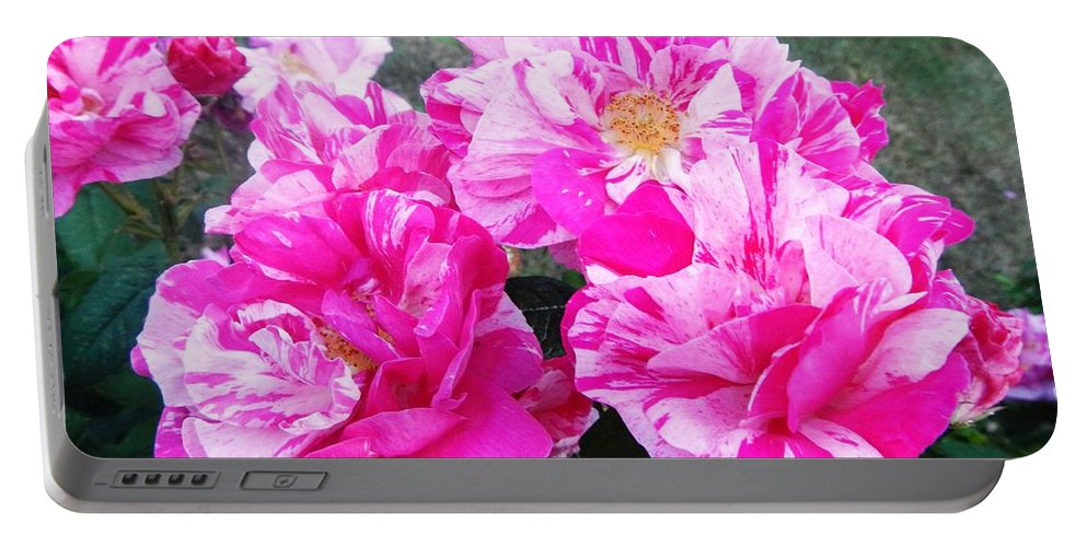 Floral.flowers Portable Battery Charger featuring the photograph In Strips by Loreta Mickiene