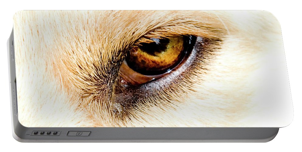 Eye Portable Battery Charger featuring the photograph In The Eyes.... by Rod Wiens