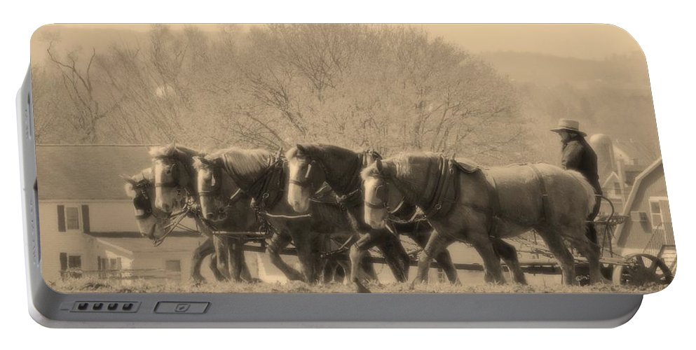 Horses Portable Battery Charger featuring the photograph In The Field by Alice Gipson
