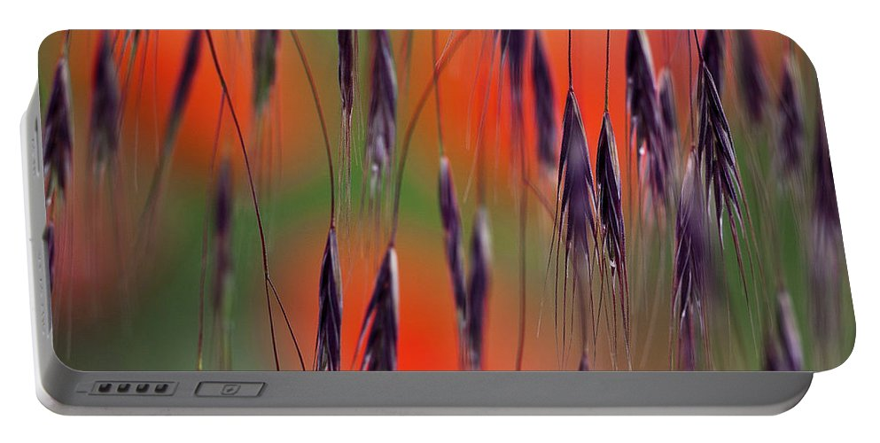 Abstract Portable Battery Charger featuring the photograph In The Meadow by Heiko Koehrer-Wagner