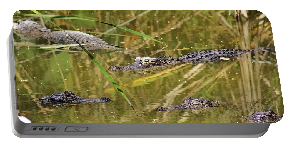 Everglades Portable Battery Charger featuring the photograph In The Reflection by Chuck Hicks