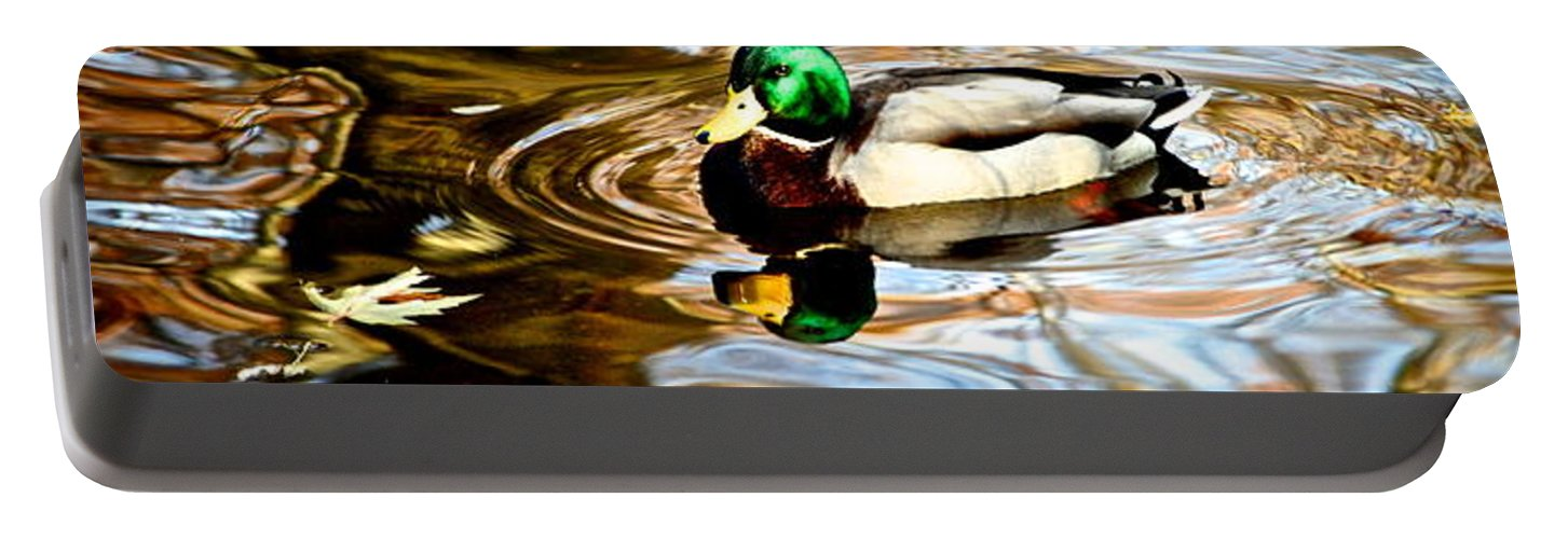 Fall Portable Battery Charger featuring the photograph In The Spotlight by Frozen in Time Fine Art Photography