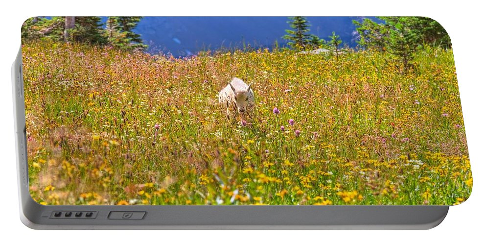 Hidden Lake Portable Battery Charger featuring the photograph In The Thick Of It All by James Anderson