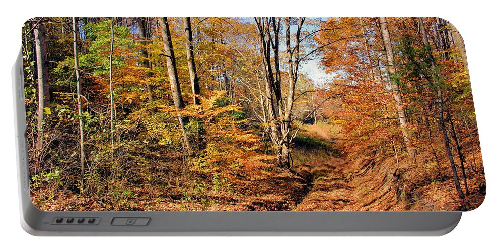 In The Woods Portable Battery Charger featuring the photograph In The Woods by Kristin Elmquist