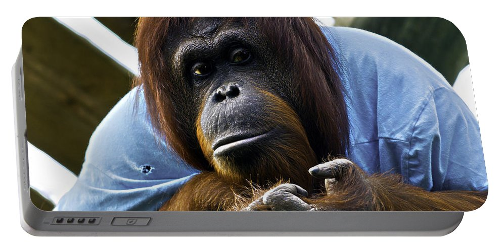Chimpanzee Portable Battery Charger featuring the photograph Indifference by Ken Frischkorn
