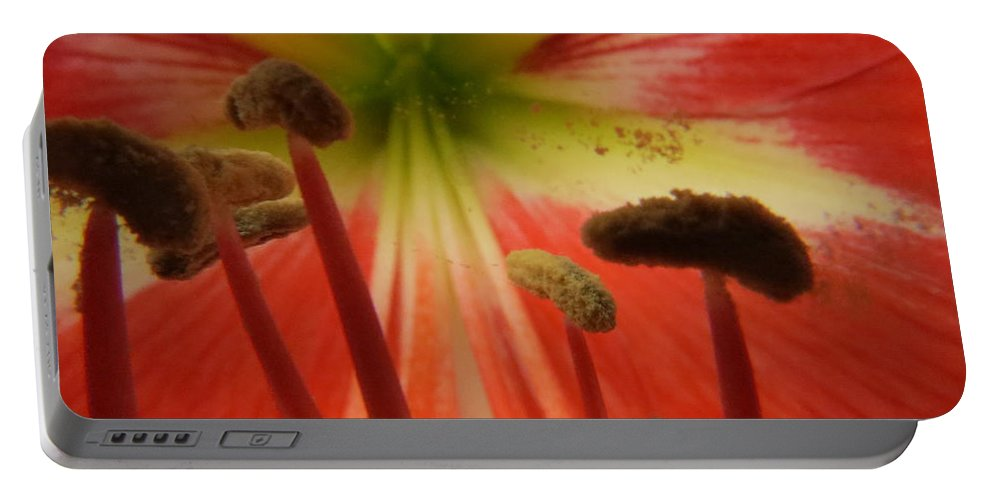 Amaryllis Portable Battery Charger featuring the photograph Inside Amaryllis by Zina Stromberg
