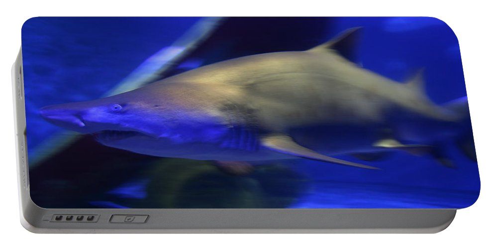 Sharks Portable Battery Charger featuring the photograph Into The Blue by Neal Eslinger