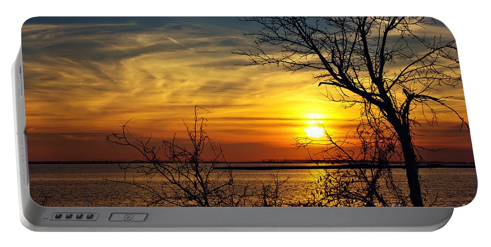 Sunset. Sun Portable Battery Charger featuring the photograph Intricate Details by Joan McCool