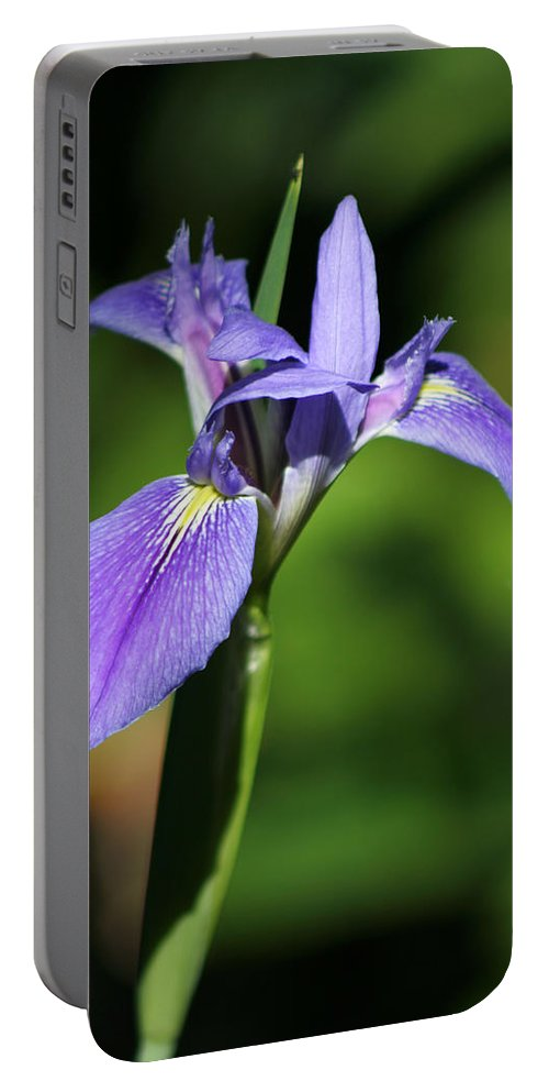Silver Springs Portable Battery Charger featuring the photograph Iris by Allan Lovell