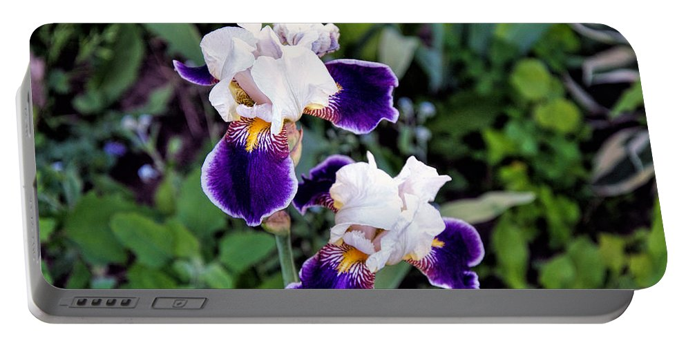 Iris Portable Battery Charger featuring the photograph Iris by George Fredericks