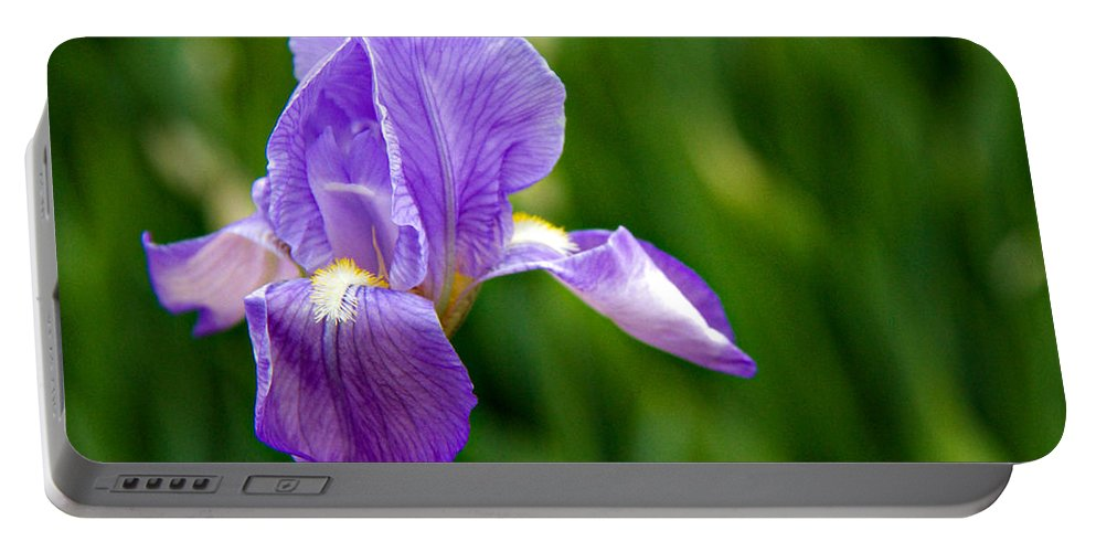 Background Portable Battery Charger featuring the photograph Iris by Lana Trussell