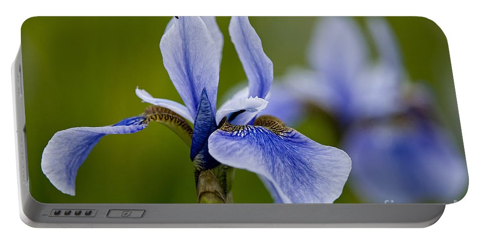 Iris Portable Battery Charger featuring the photograph Iris Pictures 185 by World Wildlife Photography