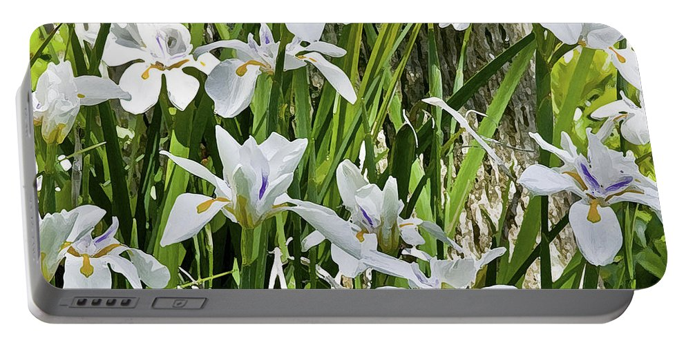 Iris Portable Battery Charger featuring the photograph Irises Dancing In The Sun Painted by Rich Franco