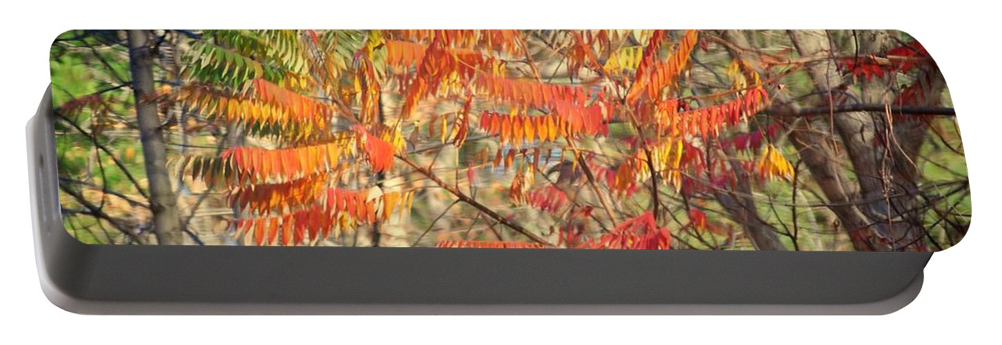 Memorex Portable Battery Charger featuring the photograph Is It Live Or Is It Memorex by Frozen in Time Fine Art Photography