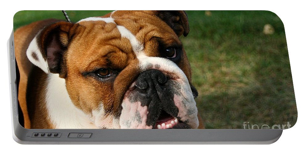 Dog Portable Battery Charger featuring the photograph Is That So by Susan Herber