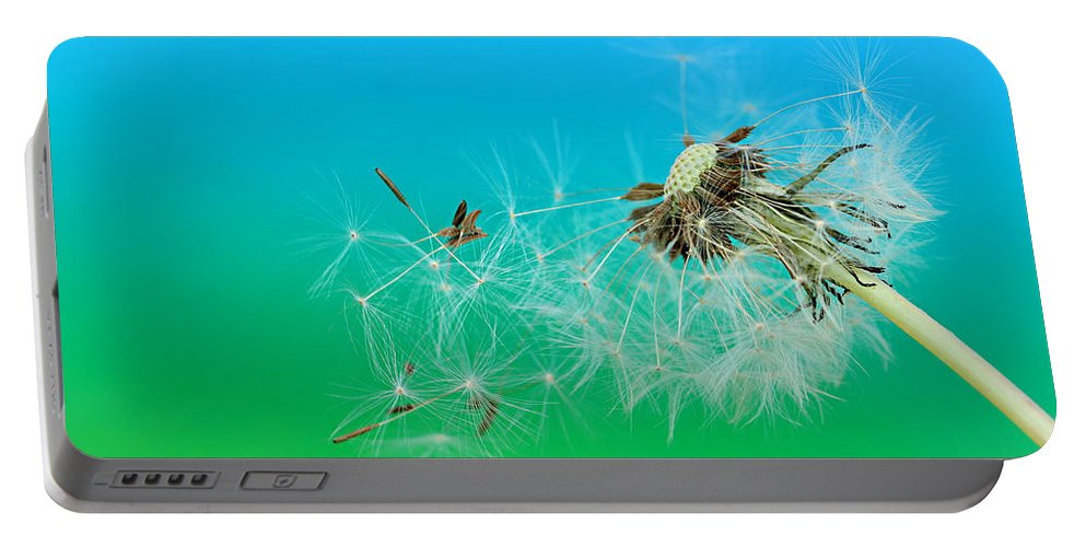 Drops Portable Battery Charger featuring the photograph It's Summer by Heike Hultsch