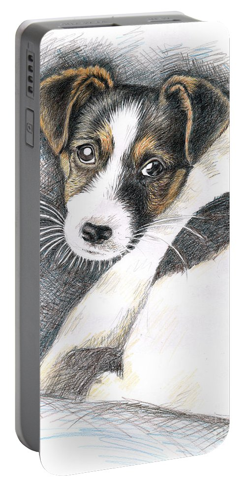 Dog Portable Battery Charger featuring the drawing Jack Russell Puppy by Nicole Zeug